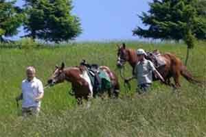 Vacanze a cavallo a Vittorio Veneto